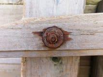 Parafusos oxidados na parede de madeira fotos de stock
