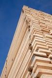 Parafusos prisioneiros de madeira frescos Imagens de Stock