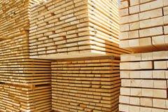 Parafusos prisioneiros de madeira frescos Imagem de Stock