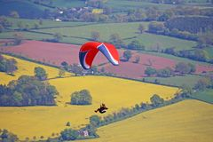 Paraglider above rape fields Royalty Free Stock Image