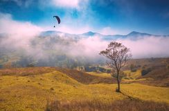Paraglide silhouette flying above foggy carpathian hills Royalty Free Stock Photography