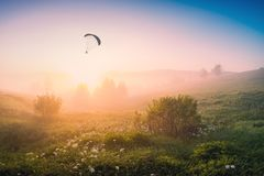 Paraglide silhouette flying at early morning Royalty Free Stock Photo