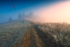 Paraglide silhouette flying over the misty alpine valley. In a golden light of sunrise Stock Photos