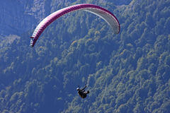 Paraglider in the Alps Stock Images