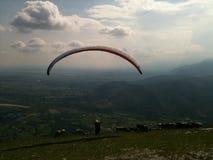 Paraglider com vacas Imagem de Stock Royalty Free