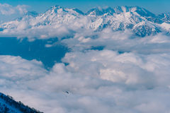 The paraglider flies over the clouds in the Caucasus Mountains Royalty Free Stock Photography