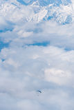 The paraglider flies over the clouds in the Caucasus Mountains Stock Photo