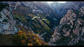 Paraglider is flying stock video footage