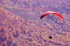 Paraglider flying over autumn forests Royalty Free Stock Image