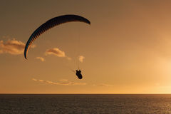 Paraglider flying at sunset Stock Image