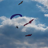 Paraglider and kites. Powered paraglider flying between kites in the sky Stock Photography