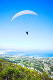 Paraglider. Launching from the ridge with a yellow and white canopy. The shot is taken right after takeoff. The canopy wingtip is sharp, with slight movement on Stock Photo