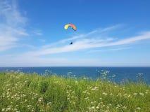 Paraglider near cliff along baltic sea coastline. Adult paraglider near cliff along baltic sea coastline and green meadow wheat field at Boltenhagen Coast stock image