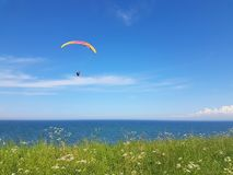 Paraglider near cliff along baltic sea coastline. Adult paraglider near cliff along baltic sea coastline and green meadow wheat field at Boltenhagen Coast royalty free stock image