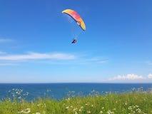 Paraglider near cliff along baltic sea coastline. Adult paraglider near cliff along baltic sea coastline and green meadow wheat field at Boltenhagen Coast stock photography