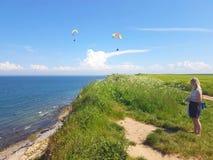 Paraglider near cliff along baltic sea coastline. Woman watching adult paraglider near cliff along baltic sea coastline and green meadow wheat field at royalty free stock photo