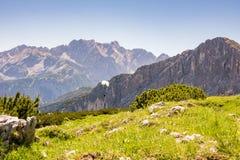 Paraglider nos cumes de Baviera Foto de Stock Royalty Free