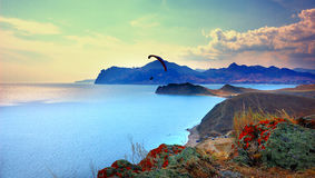 Paraglider over the Bay of Koktebel, Crimea Stock Photo