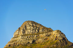 Paraglider Over Lion`s Head In Cape Town, South Africa. Paraglider over Lion`s Head Peak a landmark in Cape Town, South Africa Royalty Free Stock Images