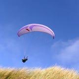 Paraglider roxo Fotos de Stock