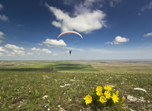 Paraglider in sky with clouds and flowers on ground Royalty Free Stock Photos