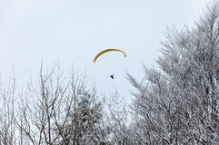 Paraglider in sky over mountain. Royalty Free Stock Photo