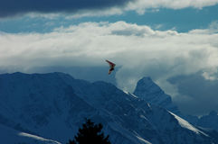 Paraglider of snowy mountain. Paraglider over blue mountains Stock Photos