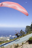 Paraglider taking off. On Lions Head in Cape Town South Africa Stock Image