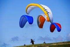 paragliders Obraz Stock
