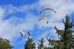 Paragliders Arkivfoton