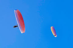Paragliders arkivfoto