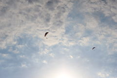 Paragliders i himlen 2 Royaltyfria Foton