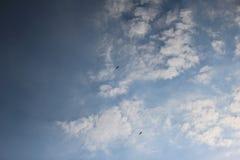 Paragliders i himlen 4 Arkivbilder