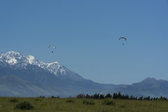 Paragliders at Kaikoura. New Zealand Stock Image
