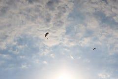 Paragliders no céu 2 Fotos de Stock Royalty Free