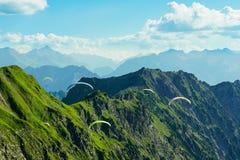 paragliding stockbilder