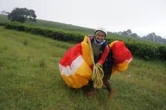 paragliding стоковая фотография rf