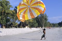 Paragliding on beach. Boy with parachute ready for paragliding on beach Royalty Free Stock Photo