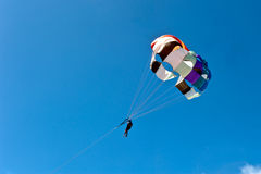Paragliding on the beach Stock Photography