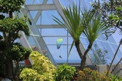 Paragliding de la opinión del centro turístico Foto de archivo