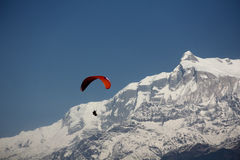 Paragliding i berg Royaltyfri Foto