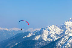 Paragliding. A man having fun with a paraglider over the mountains of Tarvisio, Italy stock images