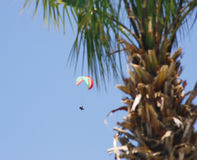 Paragliding in Oludeniz Royalty Free Stock Photo