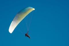 Paragliding. Over Mount Maunganui, New Zealand stock photos