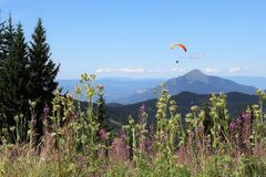 Paragliding in Samoens, French Alps royalty free stock images
