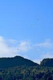 Paragliding,Pokhara Stock Image