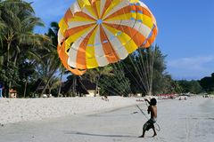 Paragliding on sand beach. In tropics Royalty Free Stock Photo