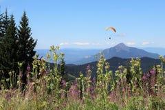 Paragliding w Samoens, Francuscy Alps obrazy royalty free