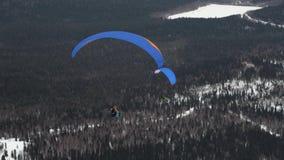 Paragliding w zimie przeciw tłu nakrywać góry zakrywać z lasem zbiory