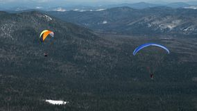 Paragliding in winter against the backdrop of snow-capped mountains covered with forest.